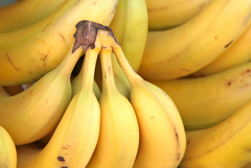 Low FODMAP Common Bananas