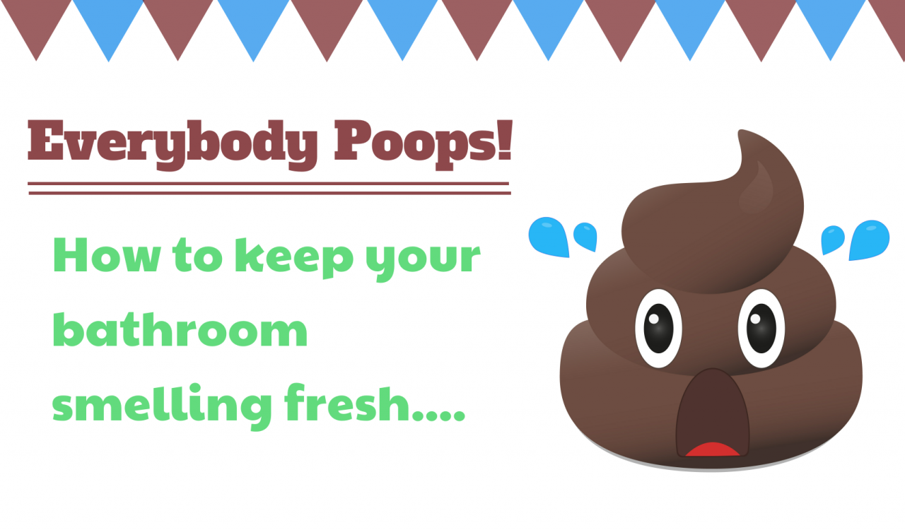 Everybody Poops! How To Keep The Bathroom Smelling Fresh - A
