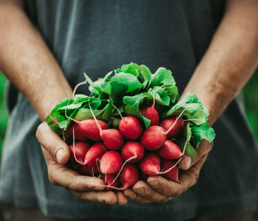 7 easy ways to eat more vegetables while on the low FODMAP diet
