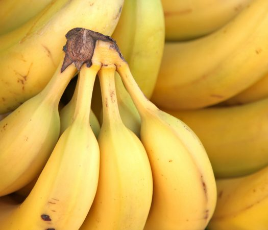 What is the difference between Sugar Bananas & Common Bananas? Are they Low FODMAP?