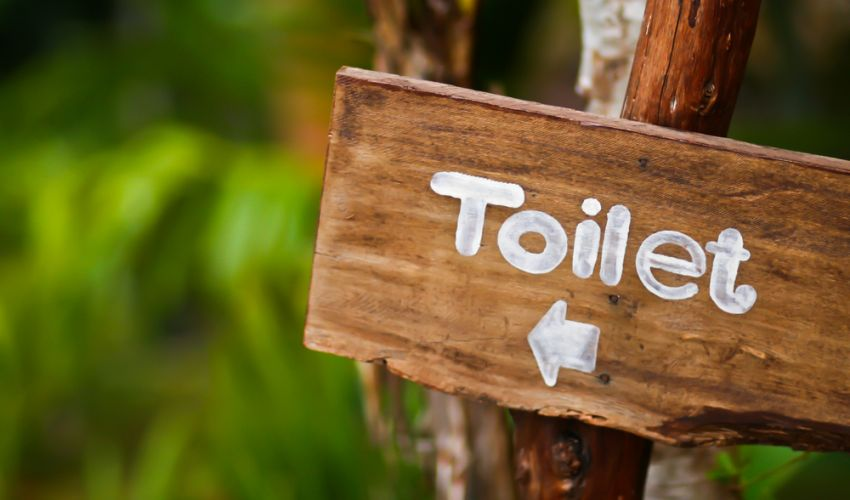 Gut Problems and IBS toilet sign