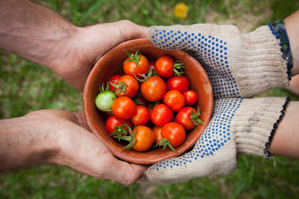 Low FODMAP Cherry Tomatoes