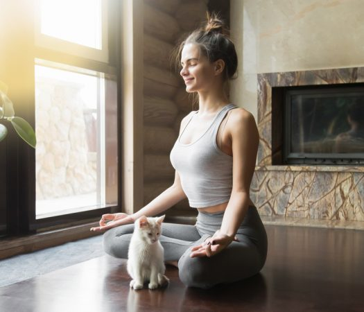 Girl Practising Yoga for IBS with Kitten